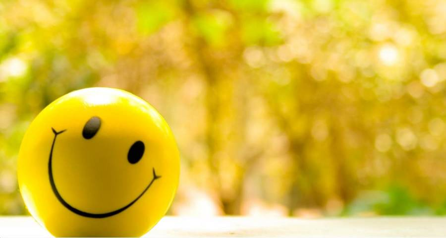 happy(2)